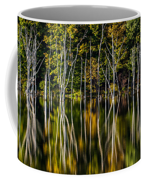 Us Coffee Mug featuring the photograph Deadwood by Mihai Andritoiu
