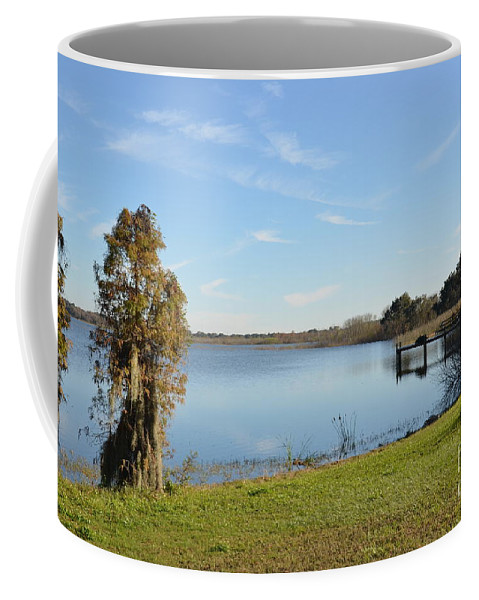 Florida Coffee Mug featuring the photograph December by Carol Bradley