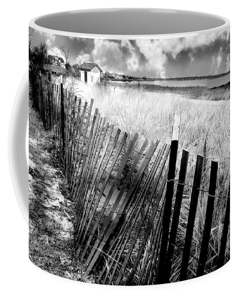 Landscape Coffee Mug featuring the photograph Decisions by Diana Angstadt