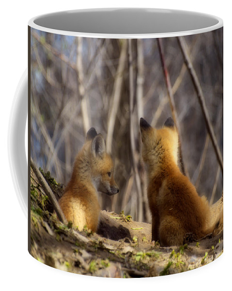 Kit Fox Coffee Mug featuring the photograph Deep In Thought 1 by Thomas Young