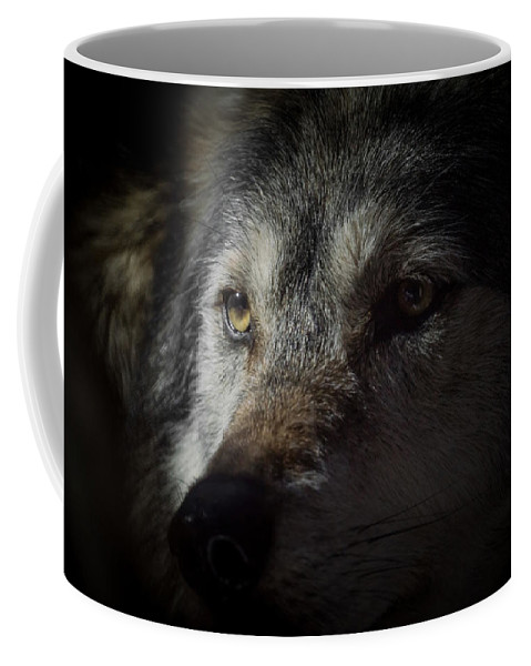 Wolf Coffee Mug featuring the photograph Deep Thoughts by Ernie Echols