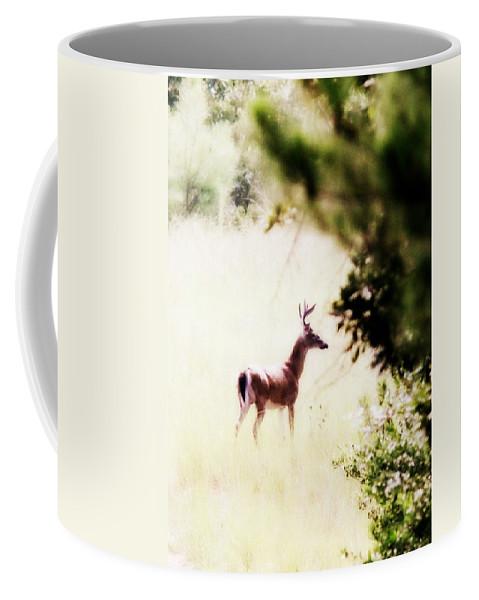 Deer - Buck - White-tailed Coffee Mug featuring the photograph Deer 2 - Buck - White-tailed by Travis Truelove