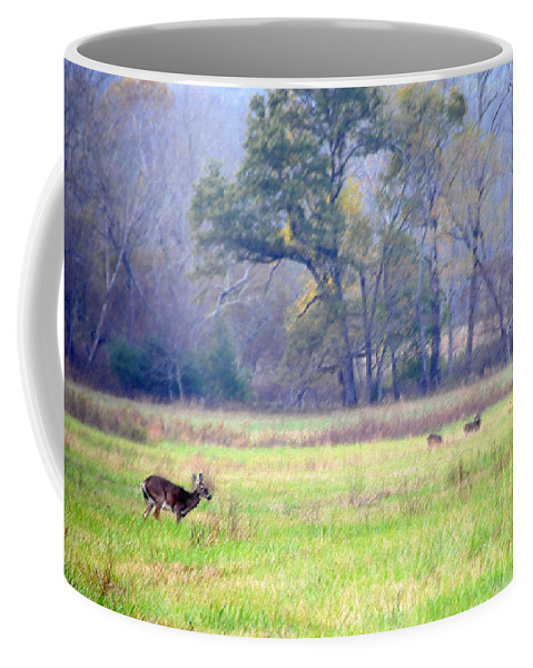 Kenny Francis Coffee Mug featuring the photograph Deer At Cades Cove by Kenny Francis