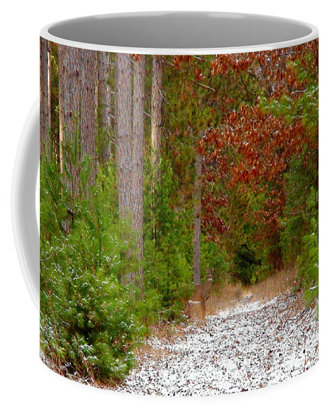 Whitetail Coffee Mug featuring the photograph Deer Trail by Thomas Young