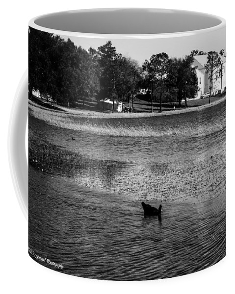 Ray Coffee Mug featuring the photograph Defuniak Lake by Debra Forand