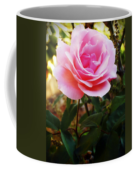 Rose Coffee Mug featuring the photograph Delicacy Of Life by Lyriel Lyra
