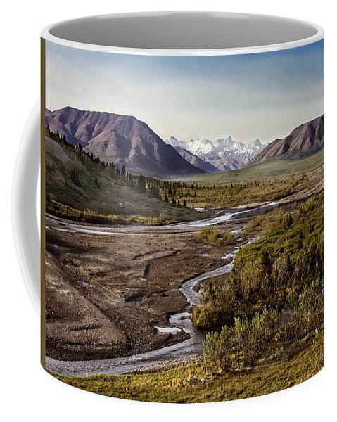 Alaska Coffee Mug featuring the photograph Denali Toklat River by Penny Lisowski