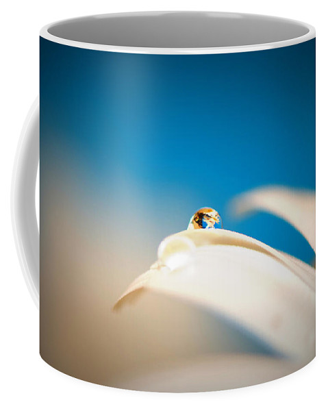 Tranquil Coffee Mug featuring the photograph Denim Daisy Day Dreams by Lisa Knechtel