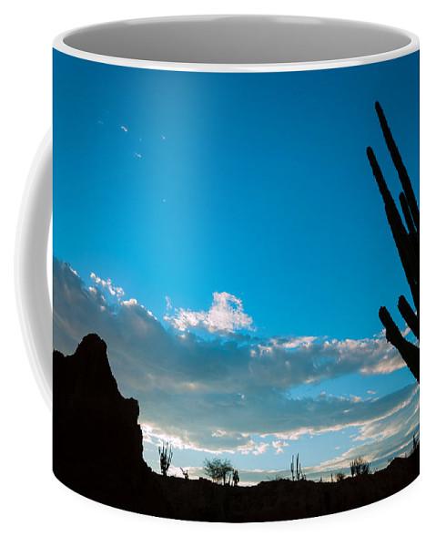 Desert Coffee Mug featuring the photograph Desert Landscape Silhouette by Jess Kraft