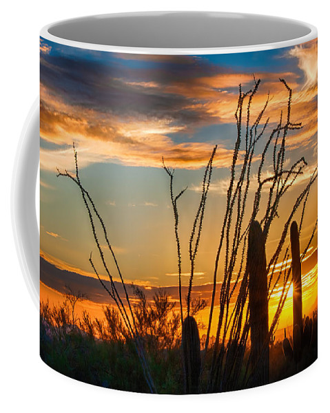 Fred Larson Coffee Mug featuring the photograph Desert Sunset by Fred Larson