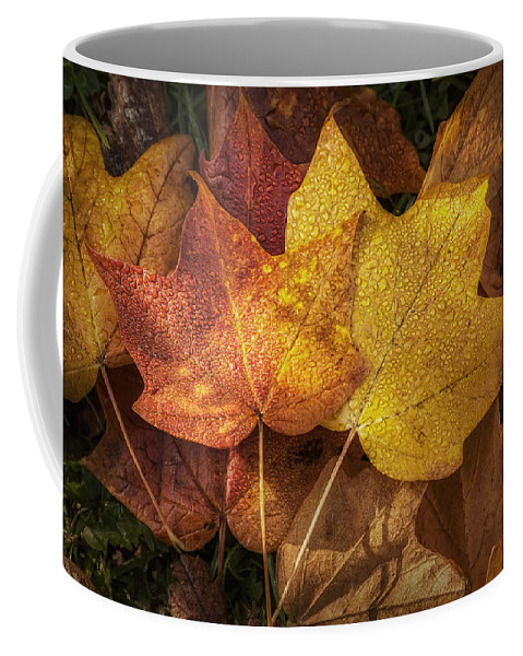 Leaf Coffee Mug featuring the photograph Dew on Autumn Leaves by Scott Norris