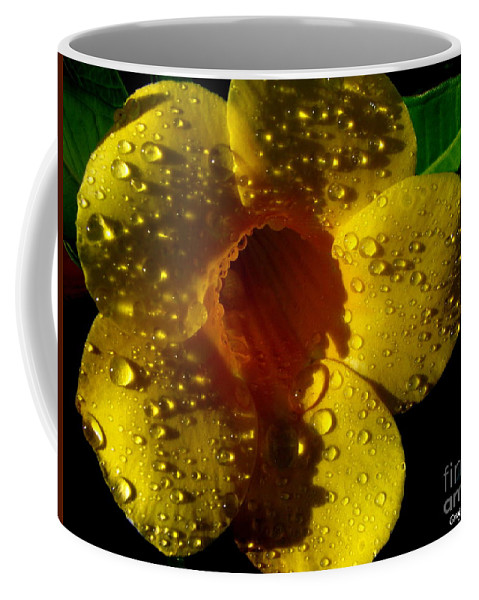 Patzer Coffee Mug featuring the photograph Dew Trumpet by Greg Patzer