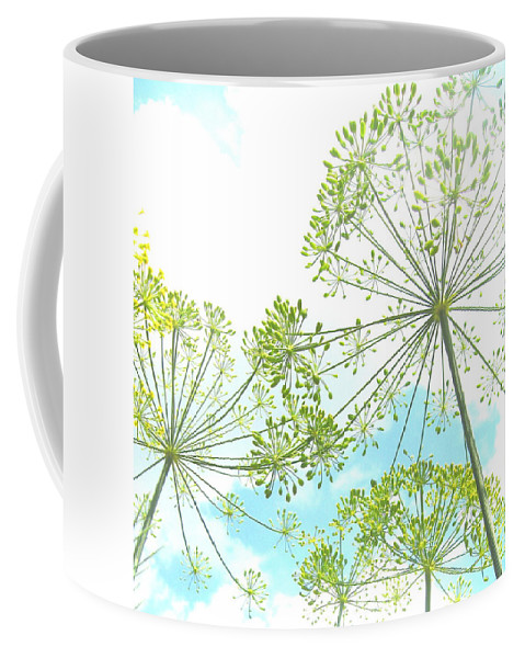 Dill Coffee Mug featuring the photograph Dill Garden by Tracy Male