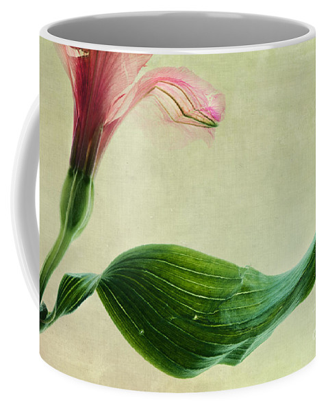 Peruvian Lily Coffee Mug featuring the photograph dim colours II by Priska Wettstein
