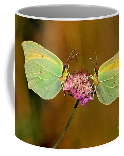 Dinner For Two Coffee Mug featuring the photograph Dinner For Two by Davids Digits