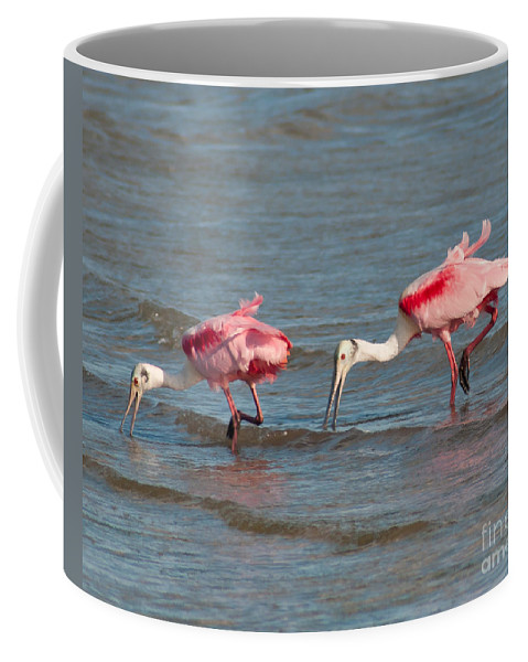 Roseate Spoonbills Coffee Mug featuring the photograph Dining Duo by Stephen Whalen