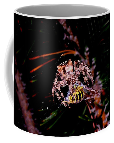 Nature Coffee Mug featuring the photograph Dinner by Joe Hamilton