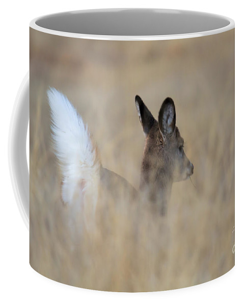 Whitetail Fawn Coffee Mug featuring the photograph Disappearing Act by Jim Garrison