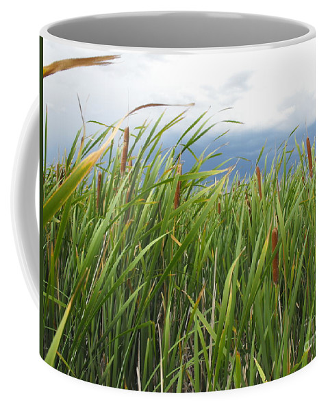 Cattails Coffee Mug featuring the photograph Dobie Swamp Tails by Brandi Maher