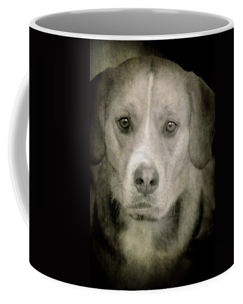 Loriental Coffee Mug featuring the photograph Dog Posing by Loriental Photography
