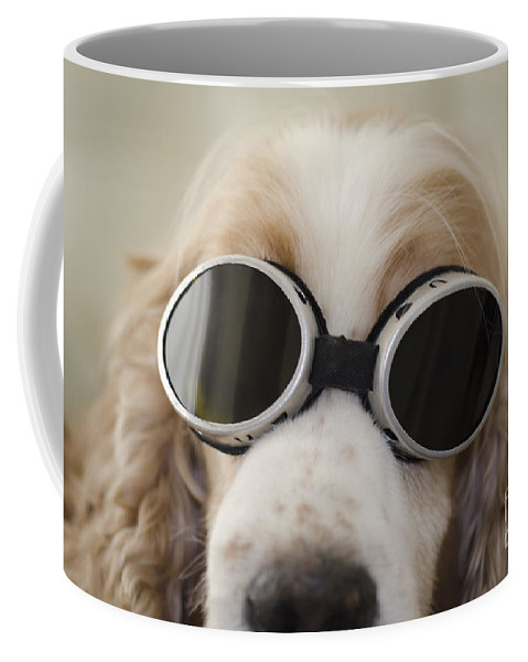 Dog Coffee Mug featuring the photograph Dog With Eyeglasses by Mats Silvan