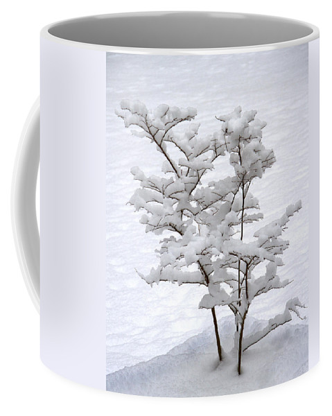 Christmas Card Coffee Mug featuring the photograph Dogwood In Snow by Guy Shultz
