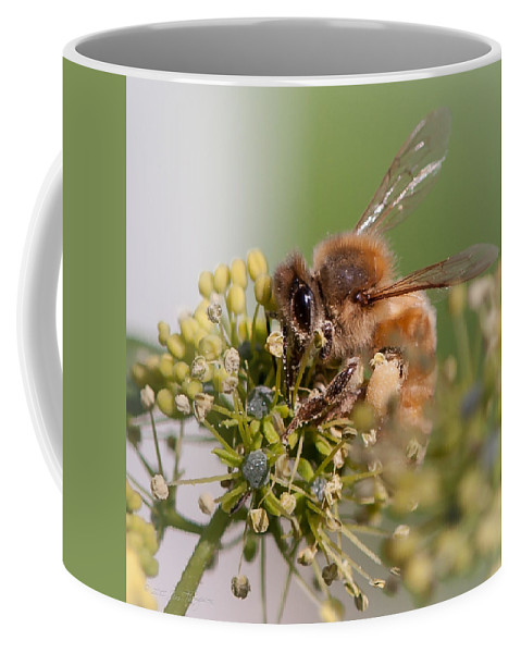 Wildlife Coffee Mug featuring the photograph Doing The Work Of God by Jim Thompson