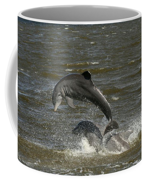 Dolphin Coffee Mug featuring the photograph Dolphin by Christiane Schulze Art And Photography