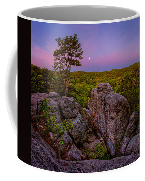 2012 Coffee Mug featuring the photograph Dome Rock by Robert Charity