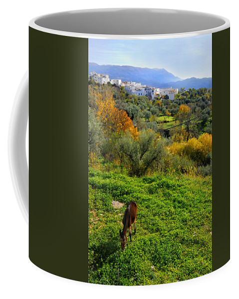 Historic Streets Coffee Mug featuring the photograph Donkey by Guido Montanes Castillo