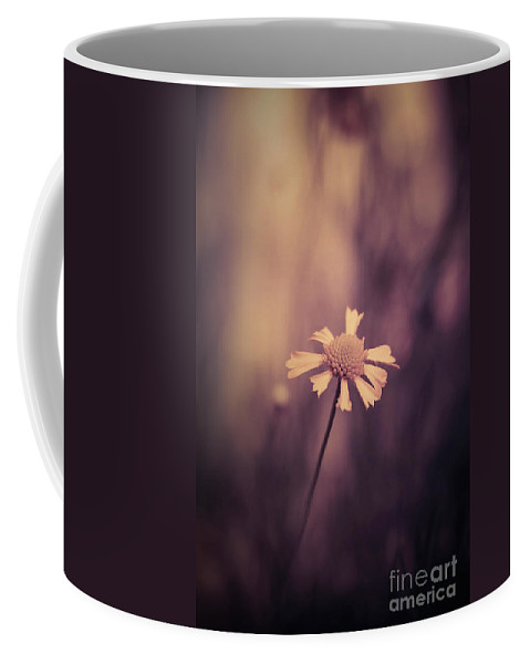Coffee Mug featuring the photograph Don't Forget Me by Trish Mistric