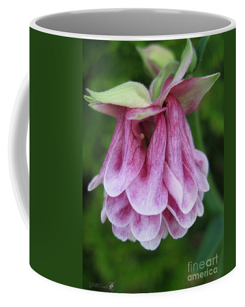 Mccombie Coffee Mug featuring the photograph Double Columbine Named Pink Tower by J McCombie