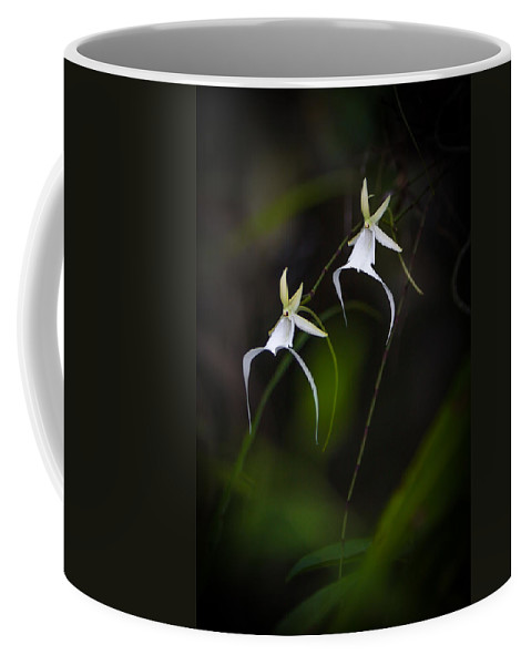 Coffee Mug featuring the photograph Double Ghost by Dennis Goodman