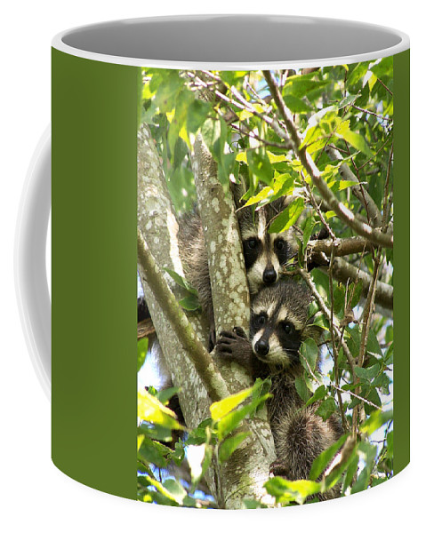 Nature Coffee Mug featuring the photograph Double Trouble by Peg Urban