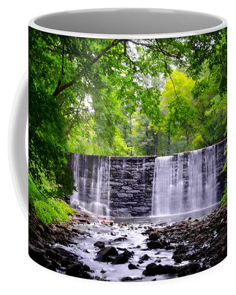 Dove Coffee Mug featuring the photograph Dove Lake Waterfall At Gladwyne by Bill Cannon