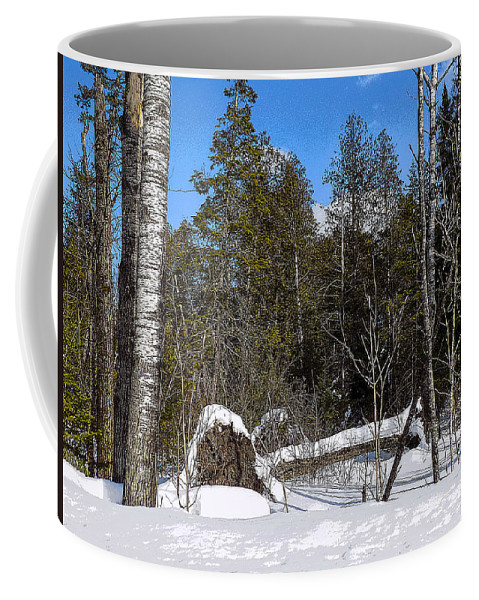 Poplar Coffee Mug featuring the photograph Downed Poplar by William Tasker