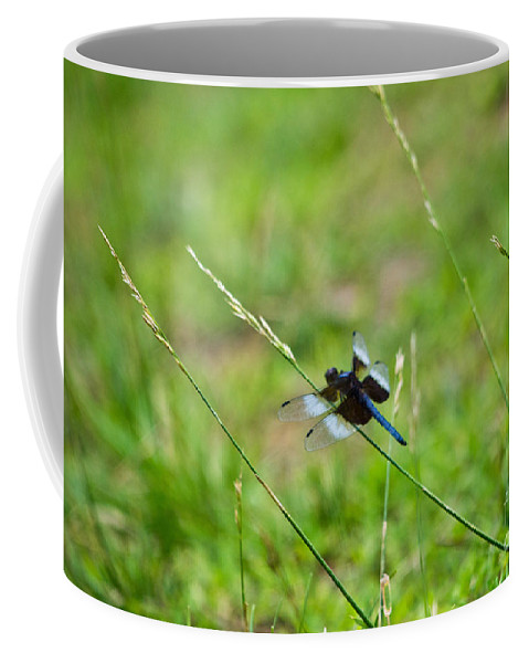 Dragonfly Coffee Mug featuring the photograph Dragon Fly 5 by Scott Hervieux
