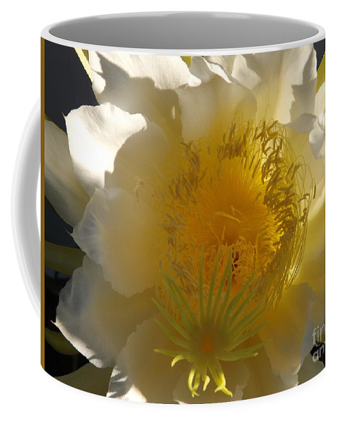 Dragon Fruit Coffee Mug featuring the photograph Dragon Fruit Double Center by Jussta Jussta