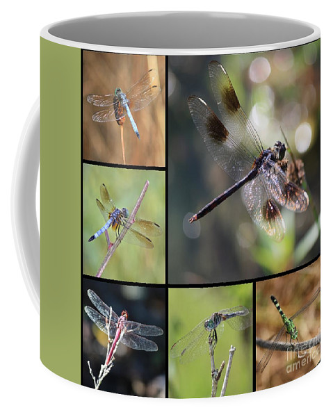Dragonfly Coffee Mug featuring the photograph Dragonflies On Twigs Collage by Carol Groenen