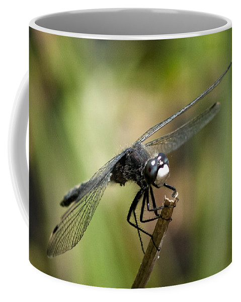 Dragonfly Coffee Mug featuring the photograph Dragonfly 2 by Betty Depee