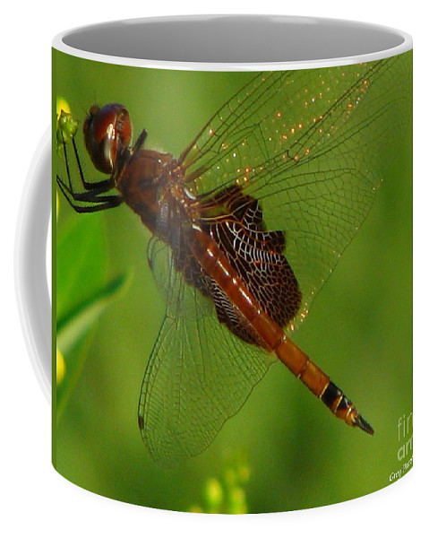 Art For The Wall...patzer Photographydragonfly Coffee Mug featuring the photograph Dragonfly Art 2 by Greg Patzer