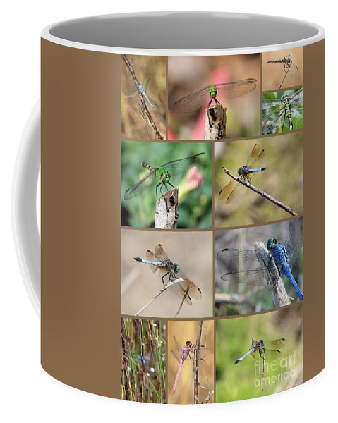 Dragonfly Coffee Mug featuring the photograph Dragonfly Collage 3 by Carol Groenen