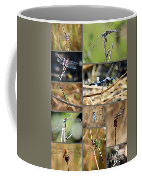Dragonflies Coffee Mug featuring the photograph Dragonfly Collage by Carol Groenen