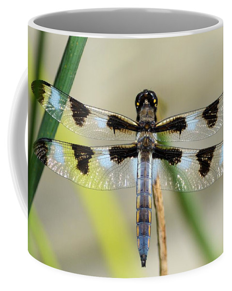 Insect Coffee Mug featuring the photograph Dragonfly by Bonfire Photography