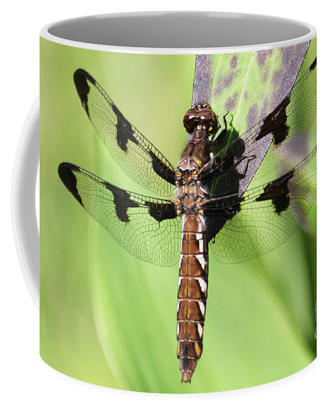 Dragonfly Coffee Mug featuring the photograph Dragonfly by Emma England