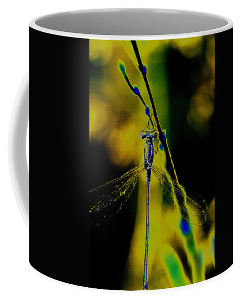 Dragonfly Coffee Mug featuring the photograph Dragonfly In The Sun by Patrick Kessler