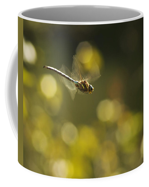 Dragonfly Coffee Mug featuring the photograph Dragonfly No 2 by Belinda Greb