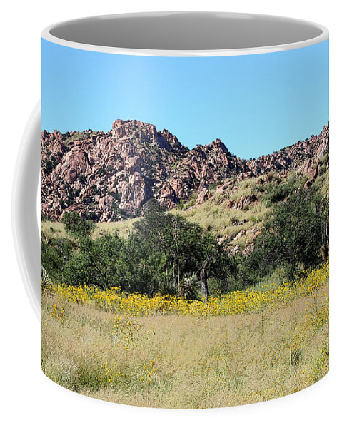 Dragoon Mountains Coffee Mug featuring the photograph Dragoon Mountains by Joe Kozlowski