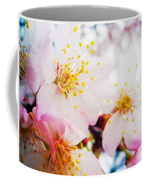 Cherry Coffee Mug featuring the photograph Dreamy Blossom by Nina Ficur Feenan