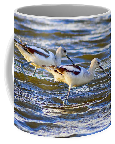 Water Coffee Mug featuring the photograph Dribbling Contest by Gary Holmes